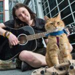 Bob el gato callejero, Gato animal